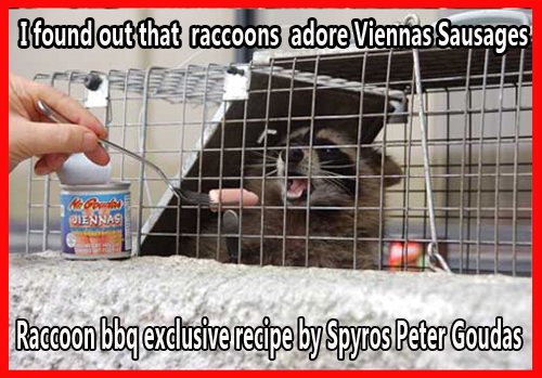 Mr. Goudas Recipes - Raccoon BBQ I found out that raccoons love  viennas  sausage   I had to check the label for an expiry date since  I did not want my raccoon to have diarrhea. FROM THE RECIPE RACCOON BBQ BY SPYROS PETER GOUDAS